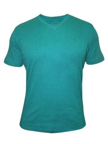 https://static3.cilory.com/110040-thickbox_default/uni-stryle-images-rain-green-v-neck-t-shirt.jpg
