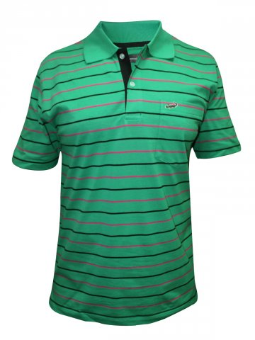 https://static2.cilory.com/114823-thickbox_default/crocodile-green-stripes-polo-t-shirt.jpg