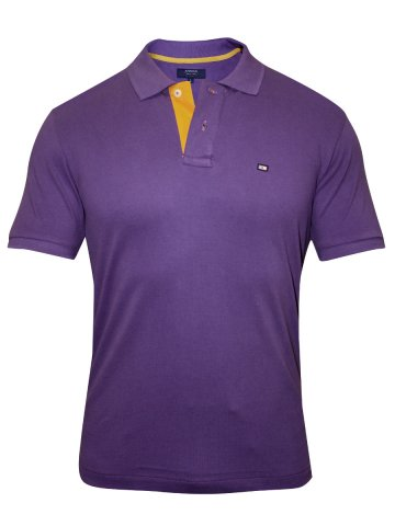 https://d38jde2cfwaolo.cloudfront.net/138641-thickbox_default/arrow-purple-polo-tshirt.jpg