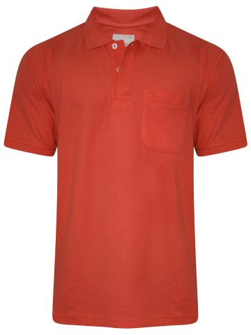 https://static9.cilory.com/285780-thickbox_default/peter-england-coral-pocket-polo-t-shirt.jpg