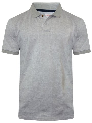 https://static7.cilory.com/296501-thickbox_default/peter-england-grey-polo-t-shirt.jpg