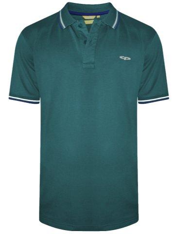 https://d38jde2cfwaolo.cloudfront.net/318450-thickbox_default/colorplus-monet-green-tipping-polo-t-shirt.jpg