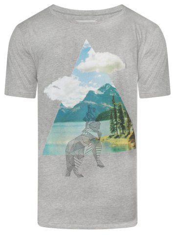 https://d38jde2cfwaolo.cloudfront.net/377241-thickbox_default/voi-men-printed-grey-t-shirt.jpg