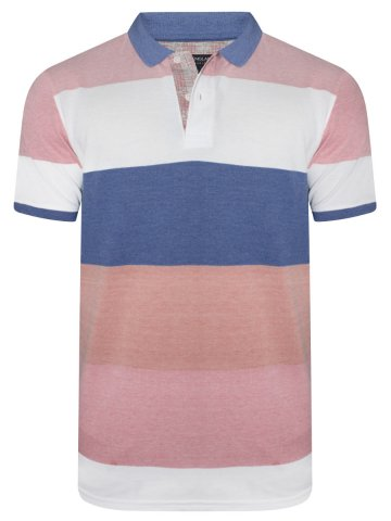 https://static4.cilory.com/391174-thickbox_default/peter-england-stripes-polo-t-shirt.jpg
