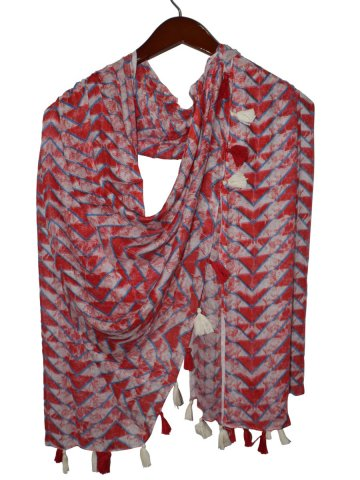 https://static5.cilory.com/407389-thickbox_default/estonished-printed-stole-with-tassels.jpg