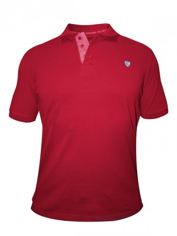 https://static4.cilory.com/92058-thickbox_default/checks-squires-red-polo-t-shirt.jpg